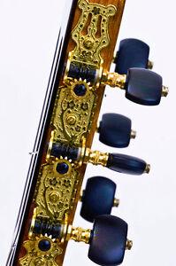 Classical Guitar Oakville / Halton Region Toronto (GTA) image 3