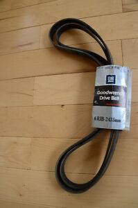 GM drive belt