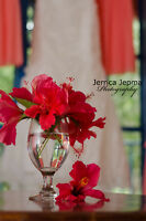 Experienced Affordable wedding photographer