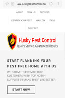 Guaranteed Pest Control at Lowest price. Call 1855 501 0074