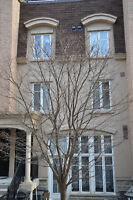 Liberty Village 2 bedroom Townhouse for rent