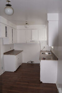 Newly renovated 4.5 apartment waiting for lucky tenants
