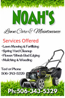 Noah's Lawn Care and Maintenance