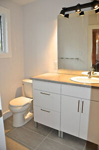 Newly renovated rustic modern 2 bedroom steps from Downtown London Ontario image 8