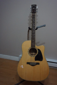 Inanez Electro-Acoustic Guitar Artwood AW300