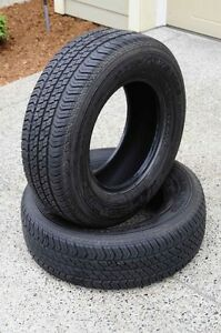 For Sale Excellent Condition, 2 All Season Radial Tubeless Tires