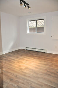 Newly renovated rustic modern 2 bedroom steps from Downtown London Ontario image 10