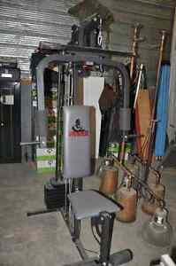weider all in one exercise machine