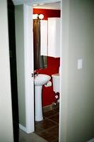 Snappy, deluxe lower suite in prime neighbourhood