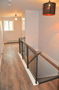 Newly renovated rustic modern 2 bedroom steps from Downtown London Ontario image 6
