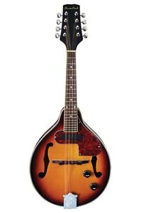 BeaverCreek Mandolin, built in pickups, warrantied