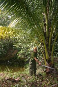 Belize Hobby Farm