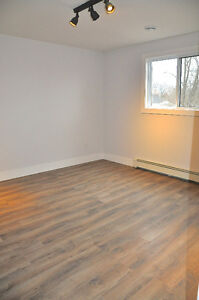 Newly renovated rustic modern 2 bedroom steps from Downtown London Ontario image 7