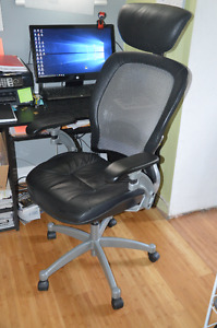 Executive Web Back Office Chair