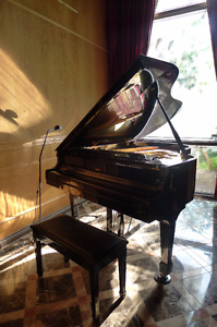 Baby Grand Piano for sale!