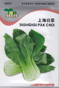 Shanghai Pak Choi Seeds FOR SALE!  FREE SHIPPING