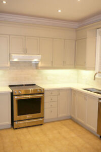 Kitchen Cabinets & Counter For Sale-Great Condition
