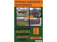 Gardening, General maintenence, painting