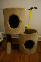 Cat house kennel brush feeder shampoo grass litter box