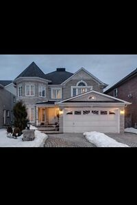 Beautiful basement for rent in Ajax