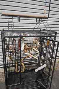 Large Bird Cage for Sale, FREE Delivery within Fredericton
