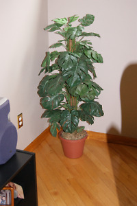 Artificial Plant/Trees