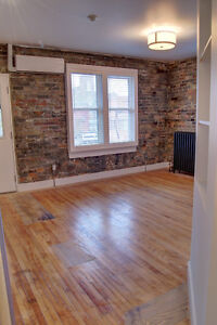 Lofts 83-91Ontario St South - Beautiful 1 bdrms Aug 1st or 15th Kitchener / Waterloo Kitchener Area image 5