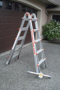 """""""Little Giant"""" Ladder"""