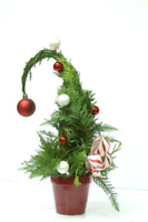 Holiday Workshops at Blooms!