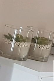 2 Lovely Artificial Plants NEW Gift bathroom living room dining kitche