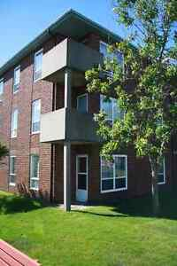 2 Two Bedroom Condos For Lease in St. John's