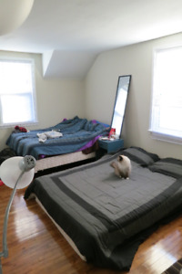 1 large bedroom available Jan, 4-6 month lease all in, furnished
