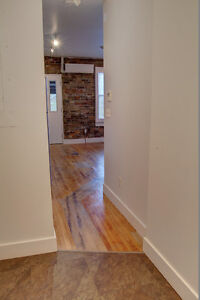 Lofts 83-91Ontario St South - Beautiful 1 bdrms Aug 1st or 15th Kitchener / Waterloo Kitchener Area image 4
