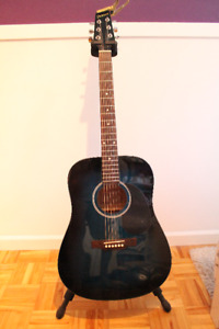 Denver Acoustic Guitar and accessories for sale (Delta)