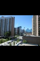 Shared Furnished condo I'm downtown East Village!!