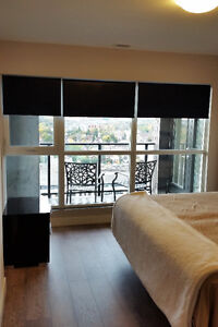 Now Available - furnished 2 bdrm with den - corner unit Kitchener / Waterloo Kitchener Area image 10