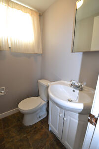 Side-by-side duplex! Live in one side and rent out the other! Regina Regina Area image 9