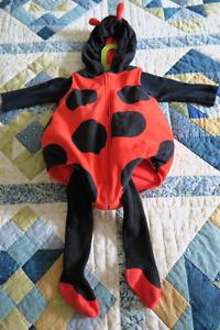 Costumes Halloween, coccinelle 12 mois et fraise 24 mois