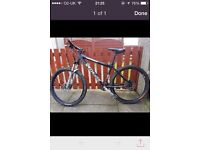 Gents pro mountain bike 17 inch frame,specialized rockhopper,everything works perfect