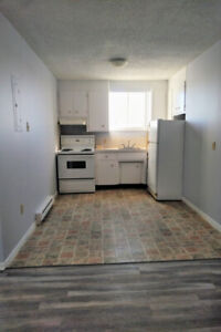 South Side 2 Bedroom Units-Pet Friendly
