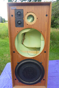 One Celestion ditton 25