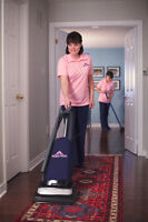 HOME CLEANER (WORK IN TEAM OF 2)