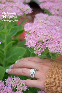 $600.00 Special Wedding & Engagement Session Printed & On Disc London Ontario image 2