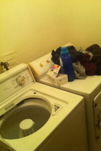 Roommate wanted . Share awesome downtown house St. John's Newfoundland image 4