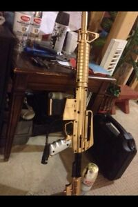 Golden empire bt omega paintball gun