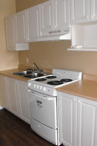 Fully updated Gorgeous 2 Bedroom/Secure Building-All Inclusive