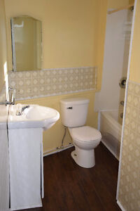 Bright Upper Level 3 Bedroom apt close to Downtown Avail NOW St. John's Newfoundland image 5
