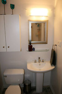 $1375 2br - 1200ft2 - Lower Duplex with Interior Garage & garden