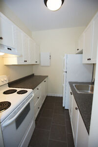 EXCLUSIVE -- BACHELOR APARTMENT in Historical Downtown Galt Cambridge Kitchener Area image 2