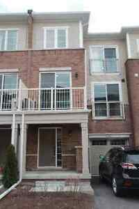 $1650/2br - 1250ft² - brand new executive 2 BR townhouse-Milton